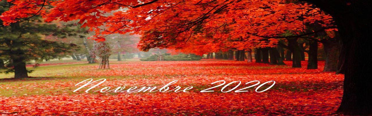 Photo d'automne Novembre